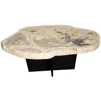 Venus Petrified Coffee Table, Natural/761235
