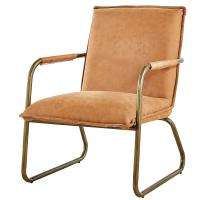 Denver Fabric KD Arm Chair Brushed Gold Legs, Rusted Caramel *NEW*/1230001-371